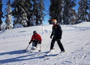 Skifahren im Monoski
