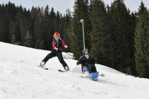 Bi-Ski mit Ausleger